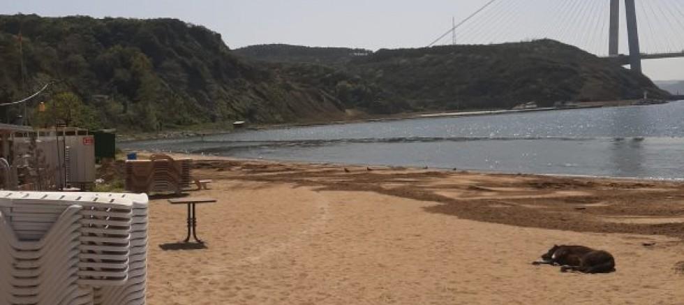 Beykoz ve Poyraz köyü halkının gözü aydın plaj betonlaştırılmıyor durduruldu