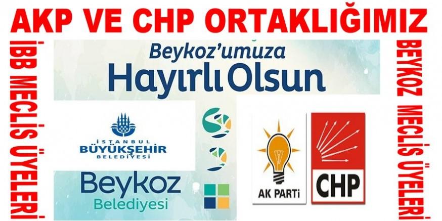CHP Beykoz ilçesi meclis üyeleri sizler belediye meclisinde ne iş yapıyorsunuz